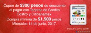 Costco Promoción Cupón Banamex Junio 6