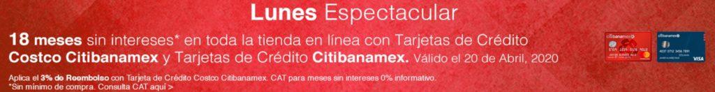 Costco Promoción Citibanamex