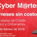 Costco Cyber Martes Banamex Febrero 27